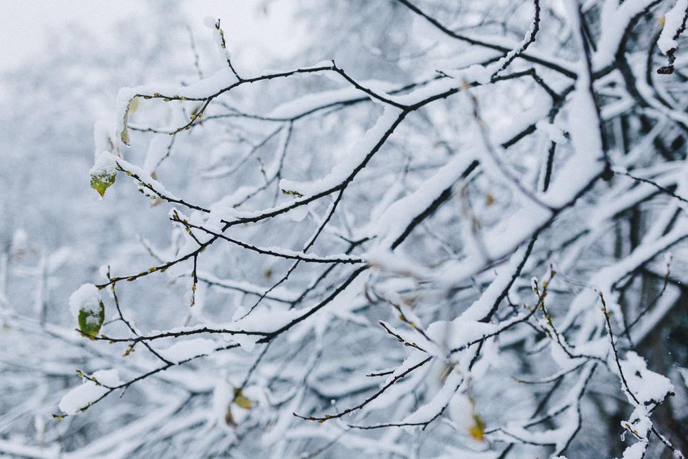 balade-dans-la-neige-et-lac-d-oo-luchon-montagne-france-rose-fushia-photographie-23