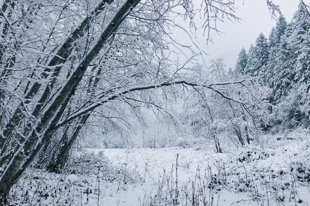 balade-dans-la-neige-et-lac-d-oo-luchon-montagne-france-rose-fushia-photographie-25