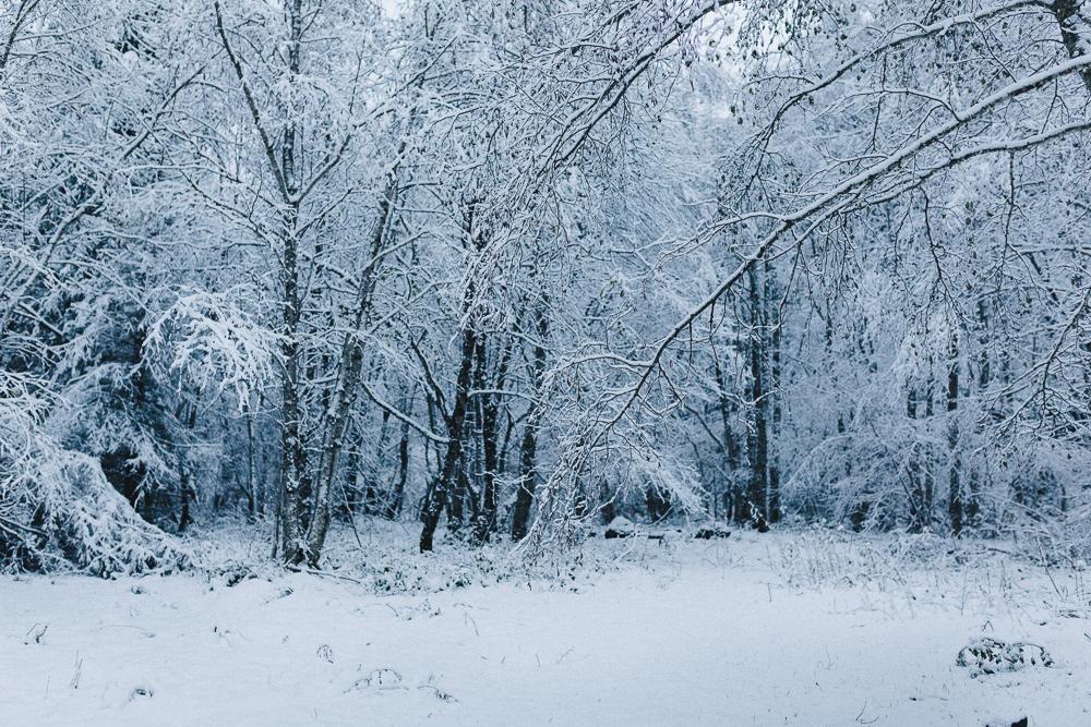 balade-dans-la-neige-et-lac-d-oo-luchon-montagne-france-rose-fushia-photographie-31