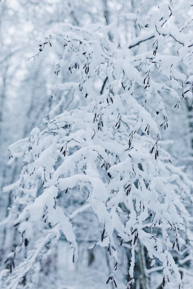 balade-dans-la-neige-et-lac-d-oo-luchon-montagne-france-rose-fushia-photographie-35