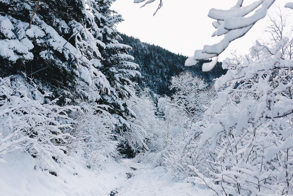 balade-dans-la-neige-et-lac-d-oo-luchon-montagne-france-rose-fushia-photographie-57