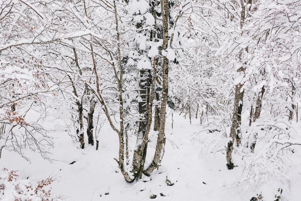 balade-dans-la-neige-et-lac-d-oo-luchon-montagne-france-rose-fushia-photographie-64