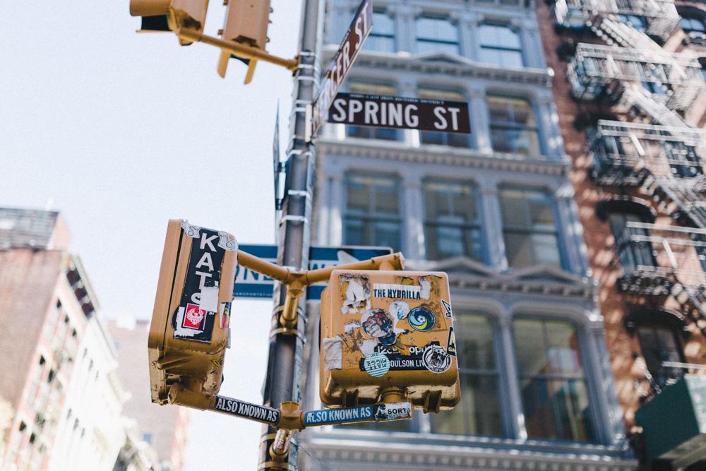 reportage-voyage-new-york-usa-avril-2015-printemps-rose-fushia-photographie-120