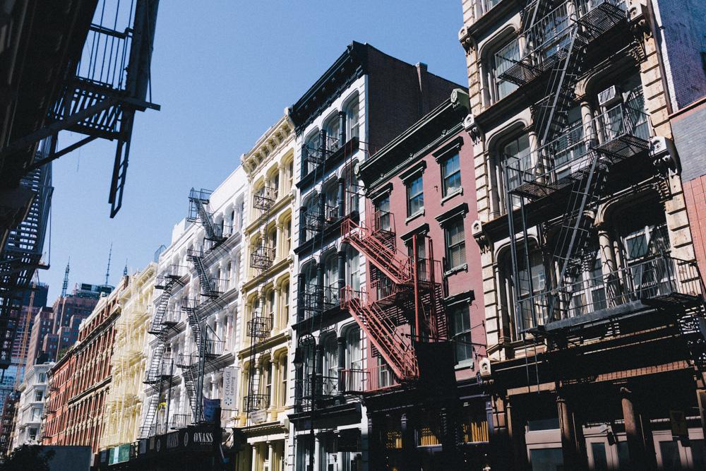 reportage-voyage-new-york-usa-avril-2015-printemps-rose-fushia-photographie-126