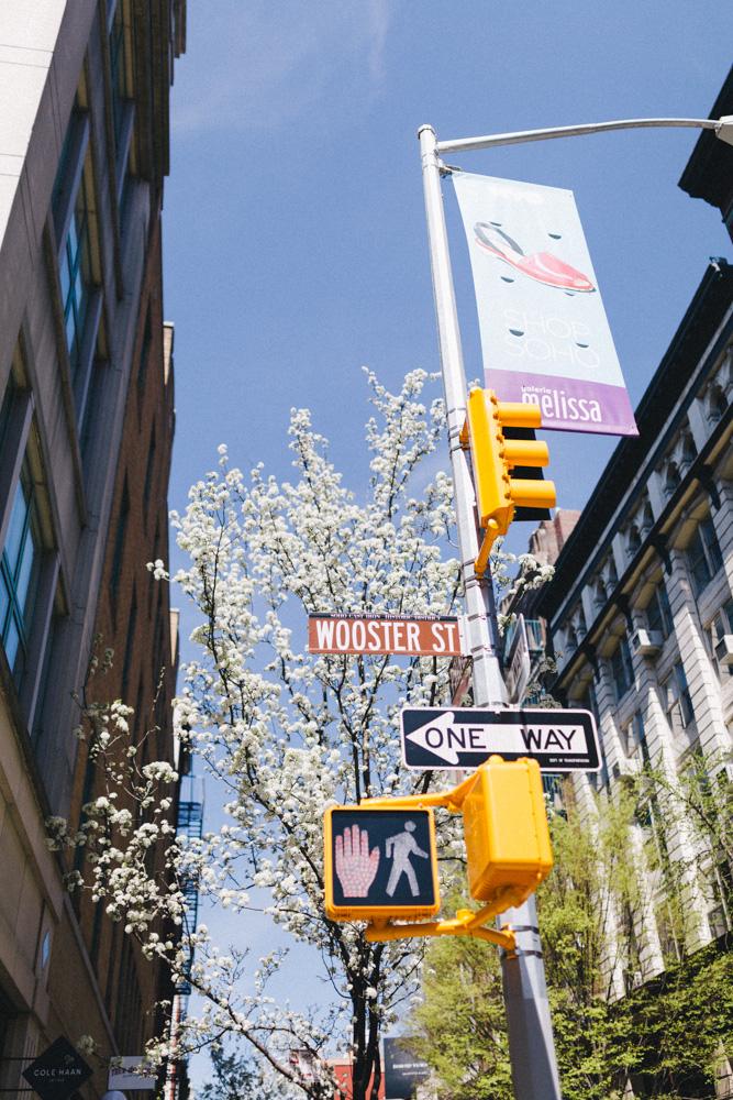 reportage-voyage-new-york-usa-avril-2015-printemps-rose-fushia-photographie-129