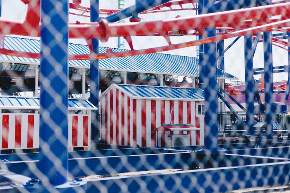 reportage-voyage-new-york-usa-avril-2015-printemps-rose-fushia-photographie-172