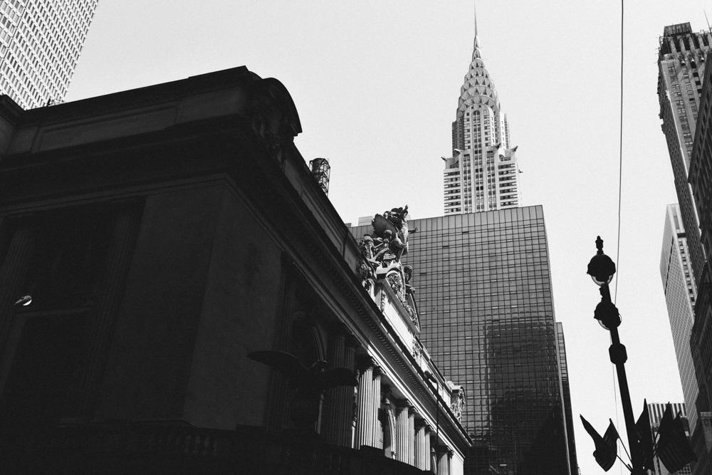 reportage-voyage-new-york-usa-avril-2015-printemps-rose-fushia-photographie-6