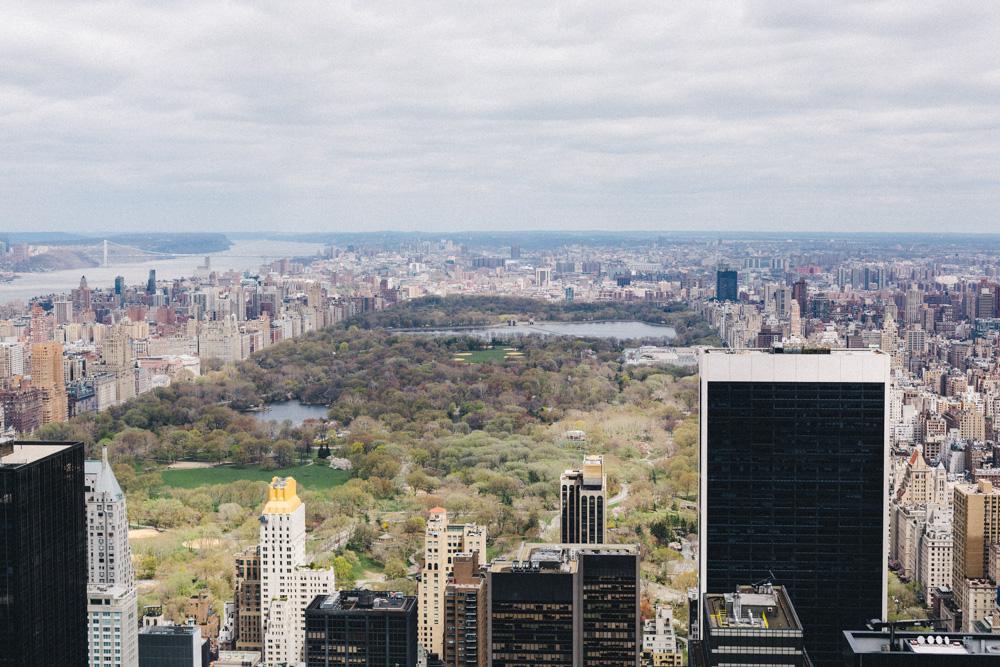 reportage-voyage-new-york-usa-avril-2015-printemps-rose-fushia-photographie-75