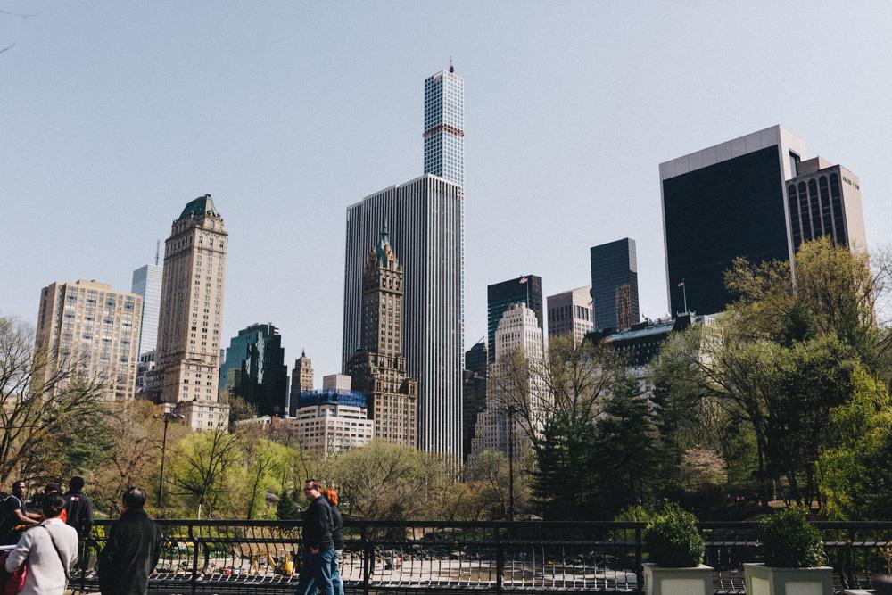reportage-voyage-new-york-usa-avril-2015-printemps-rose-fushia-photographie-9