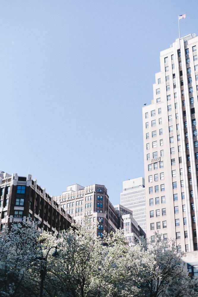 reportage-voyage-new-york-usa-avril-2015-printemps-rose-fushia-photographie-91