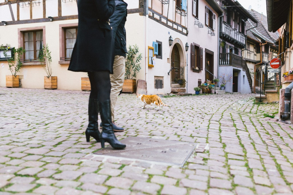 2016-03-11 au 13 Mulhouse, Eguisheim et Colmar-9