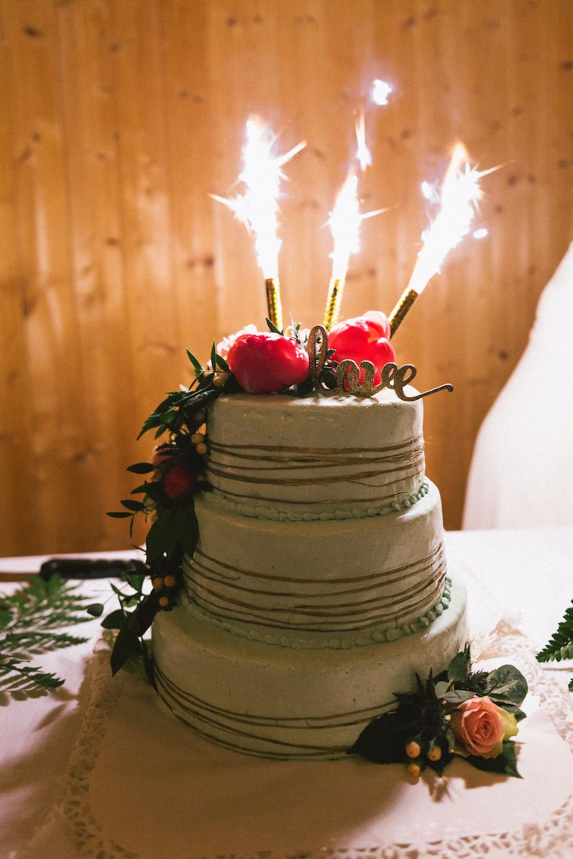 un-mariage-colore-en-combi-vw-a-salledes-rose-fushia-photographie579