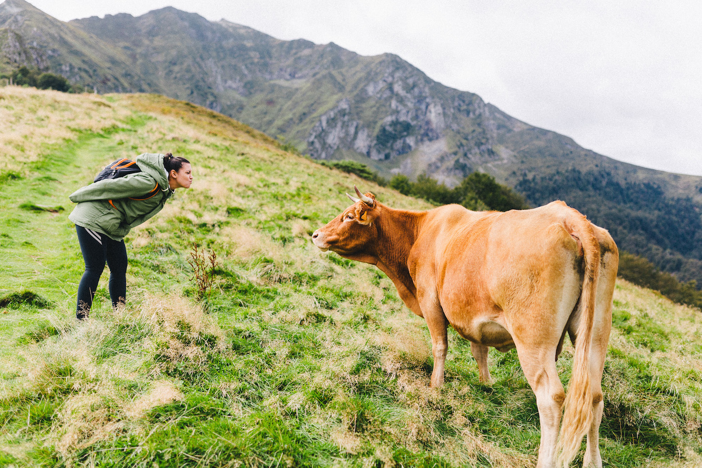 randonnee-au-lac-d-ayes-pyrenees-ariegeoises-rose-fushia-photographie009
