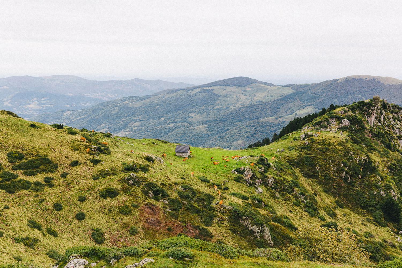 randonnee-au-lac-d-ayes-pyrenees-ariegeoises-rose-fushia-photographie057
