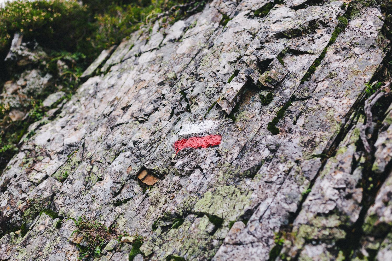 randonnee-au-lac-d-ayes-pyrenees-ariegeoises-rose-fushia-photographie075