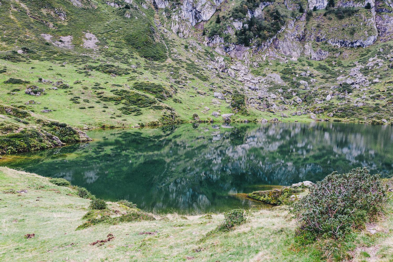 randonnee-au-lac-d-ayes-pyrenees-ariegeoises-rose-fushia-photographie089