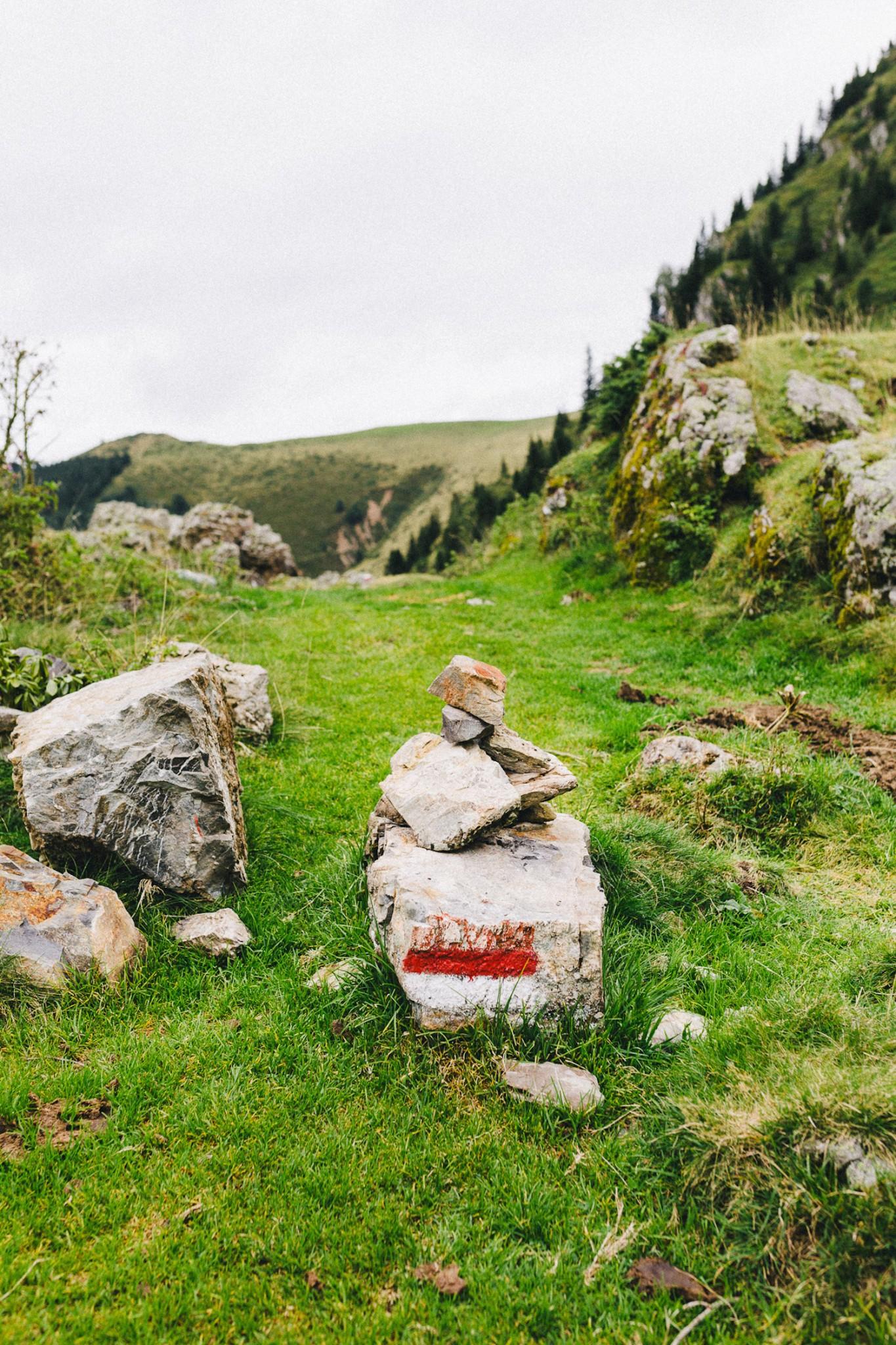 randonnee-au-lac-d-ayes-pyrenees-ariegeoises-rose-fushia-photographie127
