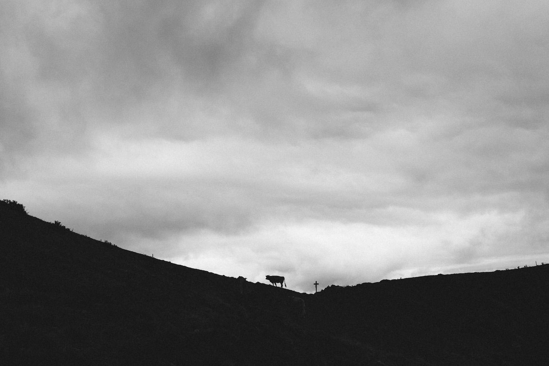 randonnee-au-lac-d-ayes-pyrenees-ariegeoises-rose-fushia-photographie136