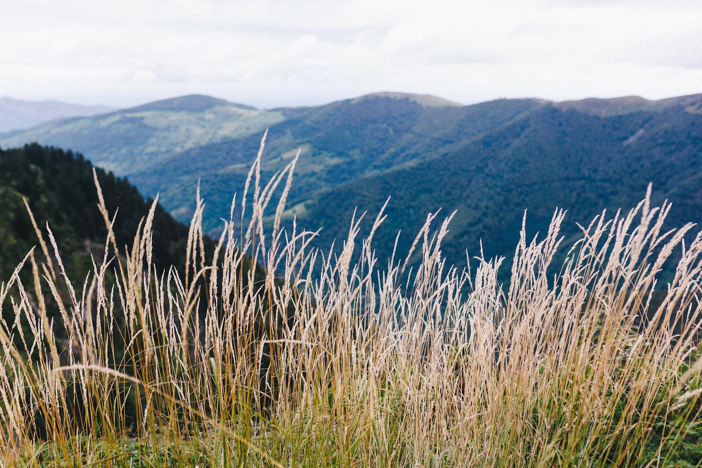 randonnee-au-lac-d-ayes-pyrenees-ariegeoises-rose-fushia-photographie138