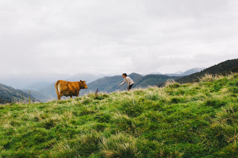 randonnee-au-lac-d-ayes-pyrenees-ariegeoises-rose-fushia-photographie169