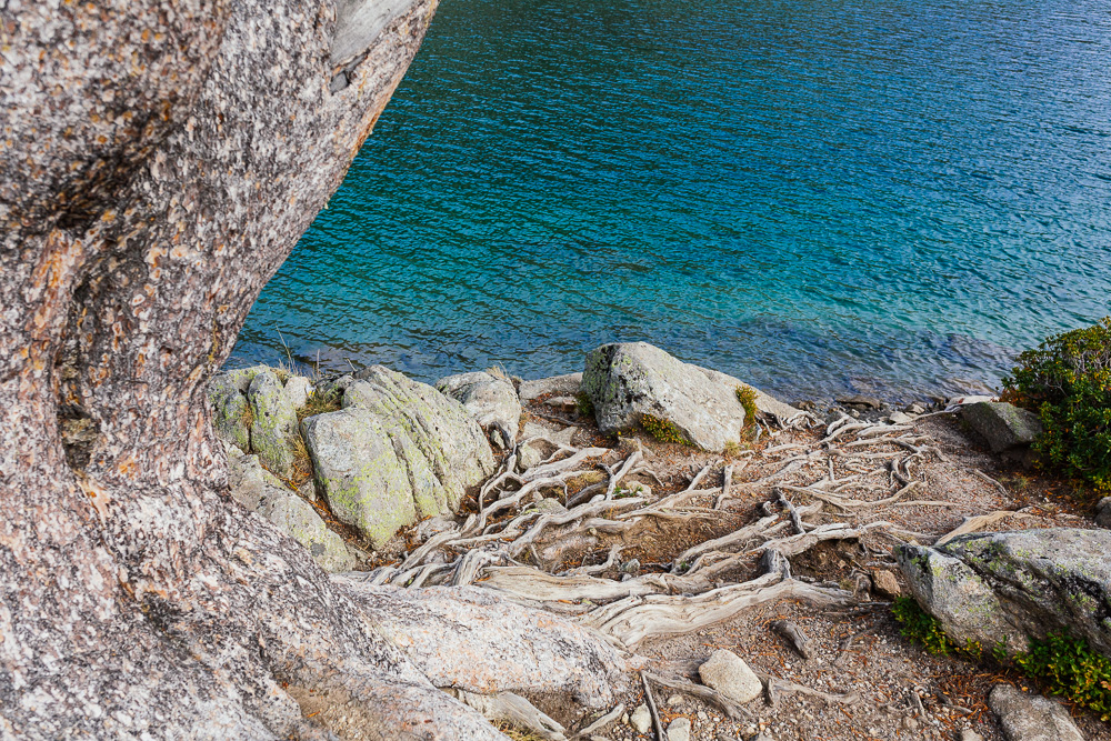 rando-lacs-de-neouvielle-hautes-pyrenees-rose-fushia-photographie-105