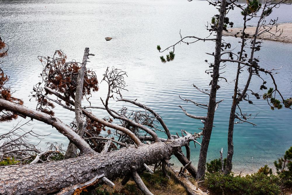 rando-lacs-de-neouvielle-hautes-pyrenees-rose-fushia-photographie-135