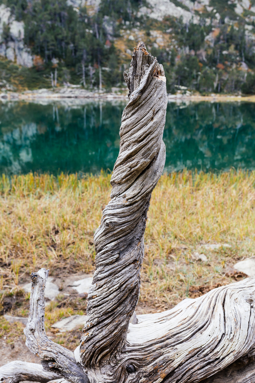 rando-lacs-de-neouvielle-hautes-pyrenees-rose-fushia-photographie-35