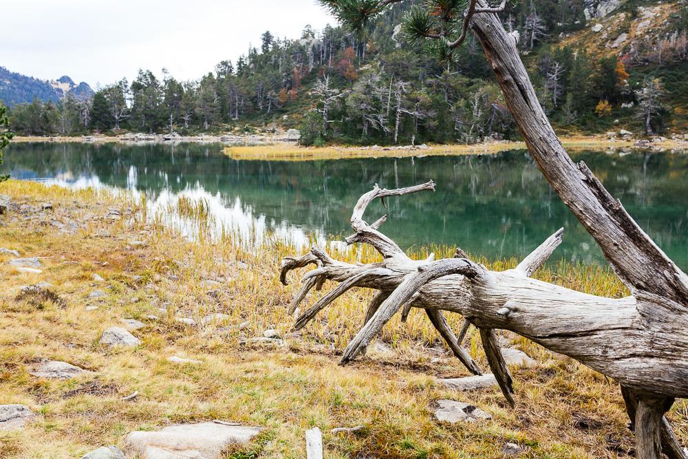 rando-lacs-de-neouvielle-hautes-pyrenees-rose-fushia-photographie-40