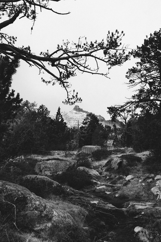 rando-lacs-de-neouvielle-hautes-pyrenees-rose-fushia-photographie-42