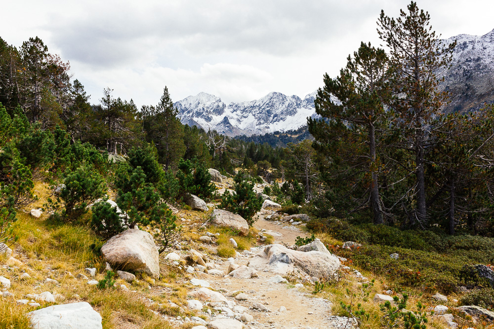 rando-lacs-de-neouvielle-hautes-pyrenees-rose-fushia-photographie-95