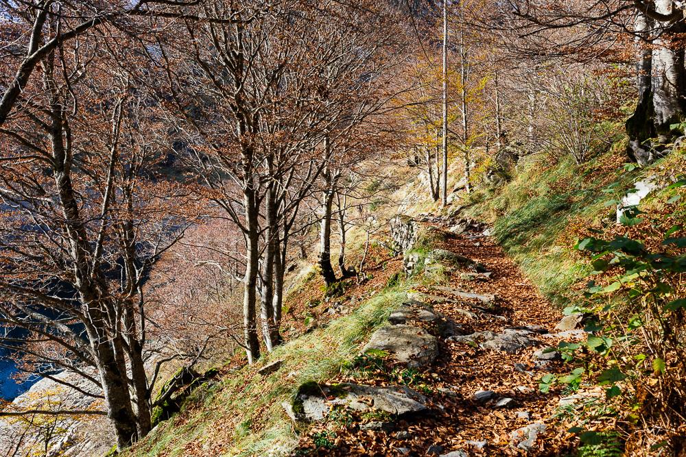 rando-pyrenees-lac-d-oo-lac-d-espingo-rose-fushia-photographie-16