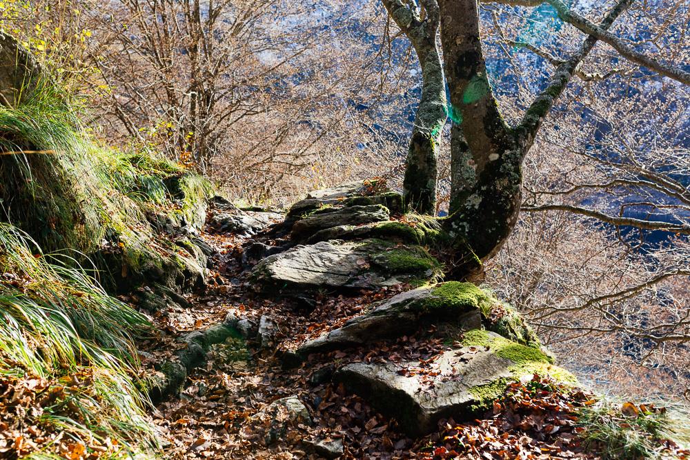 rando-pyrenees-lac-d-oo-lac-d-espingo-rose-fushia-photographie-18