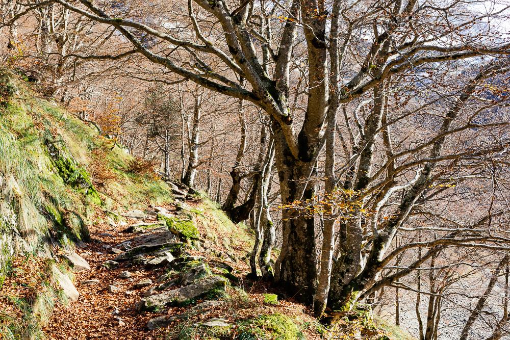 rando-pyrenees-lac-d-oo-lac-d-espingo-rose-fushia-photographie-21
