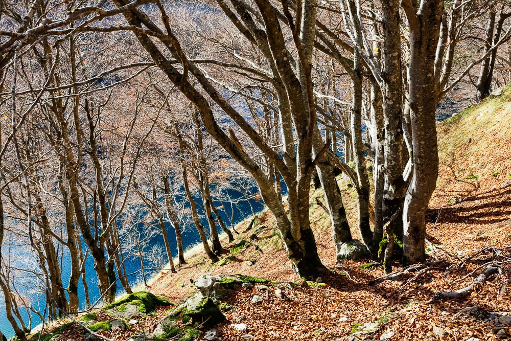 rando-pyrenees-lac-d-oo-lac-d-espingo-rose-fushia-photographie-23