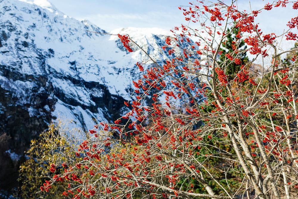 rando-pyrenees-lac-d-oo-lac-d-espingo-rose-fushia-photographie-37