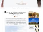 publication-boho-weddings