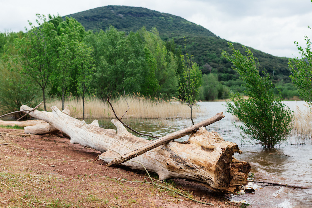 seance-engagement-roadtrip-combi-vw-camille-cyril-lacdusalagou-rosefushiaphotographie01