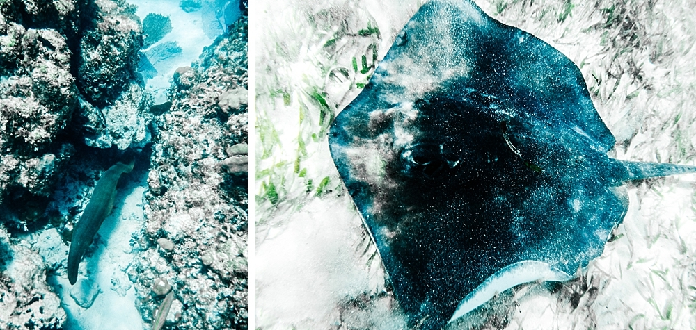 voyage-guatemala-belize-7-semaines-rosefushiaphotographie050
