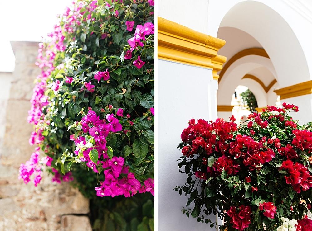 voyage-guatemala-belize-7-semaines-rosefushiaphotographie074